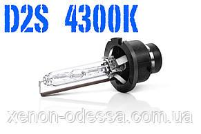 Лампа ксенон D2S 4300K 35W AC