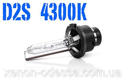 Лампа ксенон D2S 4300K 35W AC, фото 2