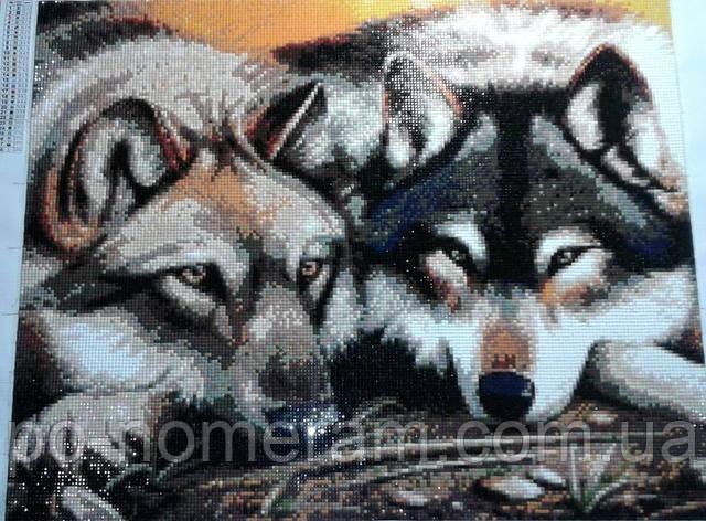готовая алмазная мозаика пара волков