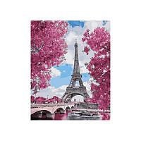 Картина по номерам Магнолия в Париже 40х50 см
