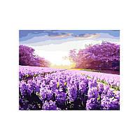 Картина по номерам Лаванда под Солнцем 40х50 см