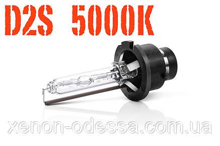 Лампа ксенон D2S 5000K 35W AC, фото 2