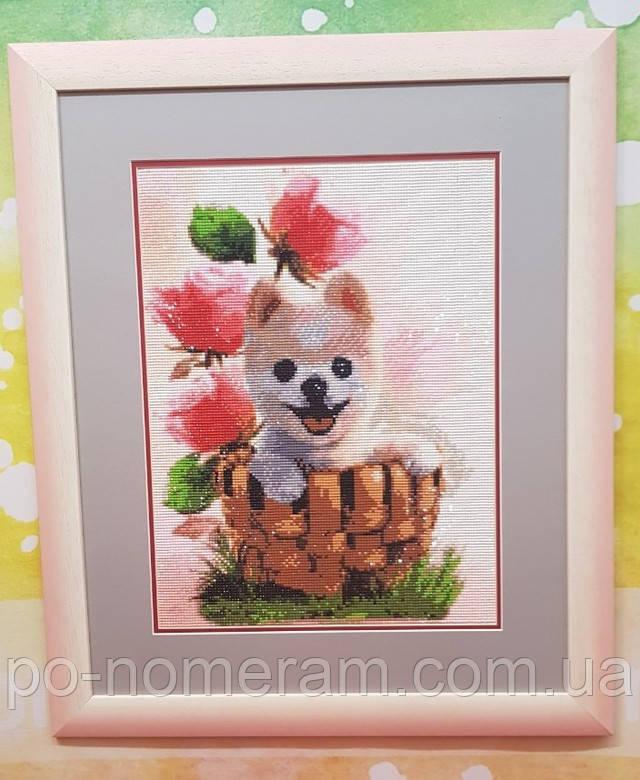алмазная вышивка фото готовой работы щенок