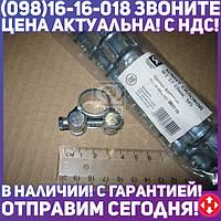 ⭐⭐⭐⭐⭐ Хомут силовой W1 17-19 мм М5 (Дорожная Карта)  DK17-19