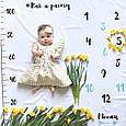 """Детский фотофон (фотопеленка) для фотосессий от 1 до 12 месяцев """"Как я расту"""", фото 2"""