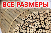 Бамбуковые стволы 366 см 26/28 мм
