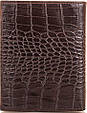 Вместительное мужское кожаное портмоне CANPELLINI SHI505 коричневый, фото 3