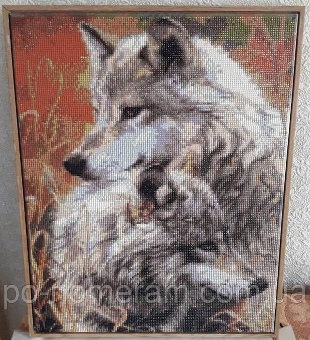 алмазная мозаика фото картины с волками