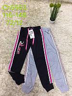 Спортивні штани для дівчаток S&D 116-146 р. р.