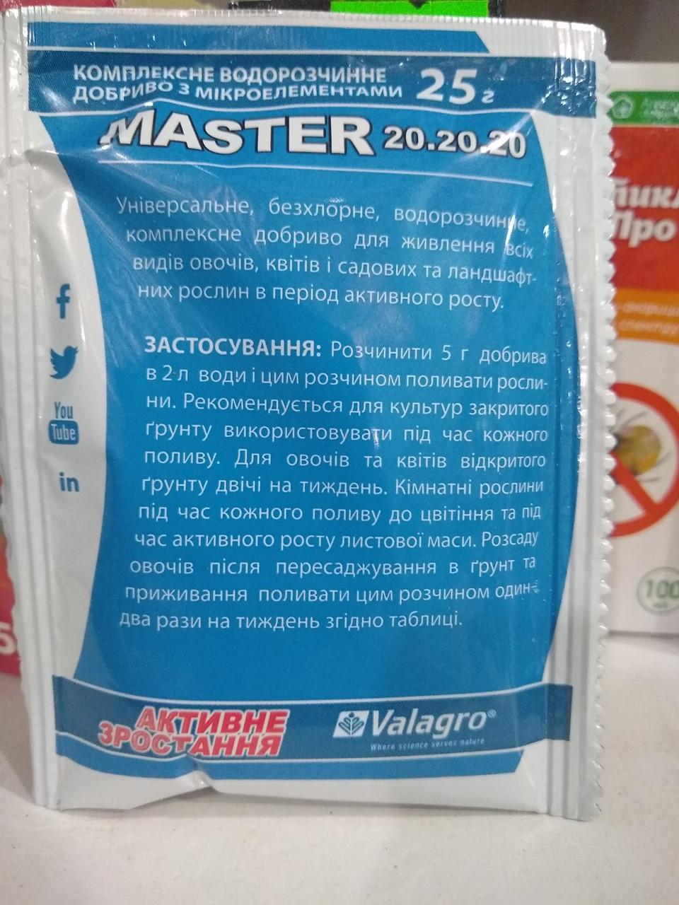 Удобрение с микроэлементами MASTER 20.20.20 активный рост 25 грамм, Valagro, Италия