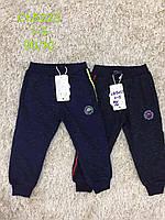 Спортивные штаны для мальчика оптом, S&D, 1-5 лет, арт. CH-5223