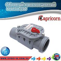 Прямой обратный канализационный клапан ∅50 мм. Capricorn