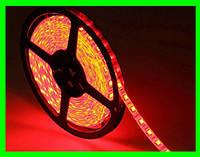LED Ленты (3528) Red длинна 5м (ВидеоОбзор)