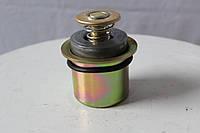 3940632 Термостат дизельного двигателя  Cummins 8.3С-215 (Камминз/Каменс) в наличии и под заказ