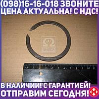 ⭐⭐⭐⭐⭐ Кольцо пружинное упорное муфты з/х (пр-во ЯМЗ)