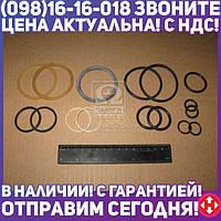 ⭐⭐⭐⭐⭐ Ремкомплект гидроцилиндра ЦС-63 (Руслан-Комплект)  Р/К-402