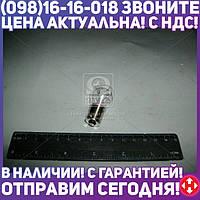 ⭐⭐⭐⭐⭐ Лампа накаливания P21W 12V-21W ВАЗ (пр-во Bosch)