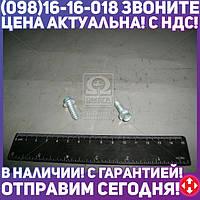 ⭐⭐⭐⭐⭐ Саморез 6,3х19 крыла ВАЗ с шестерни  головку  и фланцем (пр-во Белебей)