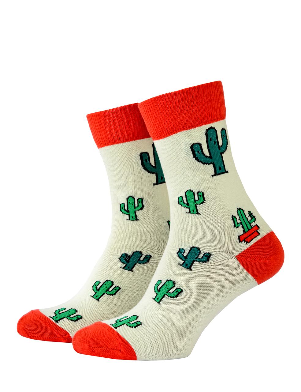 Шкарпетки Mushka Cactus (CAC001) 36-39