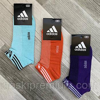 Носки женские спортивные х/б с сеткой Adidas, Athletic Sports, короткие, ассорти, 06005