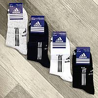 Носки мужские спортивные х/б с сеткой Adidas, Sport Socks, 41-45 размер, средние, ассорти, 550