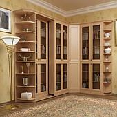 Шкафы для книг  c фасадами ДСП и МДФ