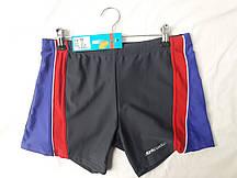 Мужские шорты на лето (2005/28)