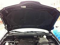 Петли капота Mitsubishi Outlander