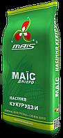 Кукуруза ДМС 3908 Маис