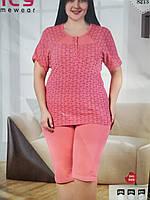 Пижама футболка с бриджами больших размеров