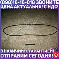 ⭐⭐⭐⭐⭐ Ремень В(Б)-2500 (производство  ЯРТ)  В(Б)-2500