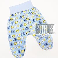 Детские хлопковые ползунки р 56 0-1 мес на широкой резинке для новорожденных швы наружу КУЛИР 3420 Голубой А