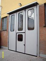 ворота з вікнами