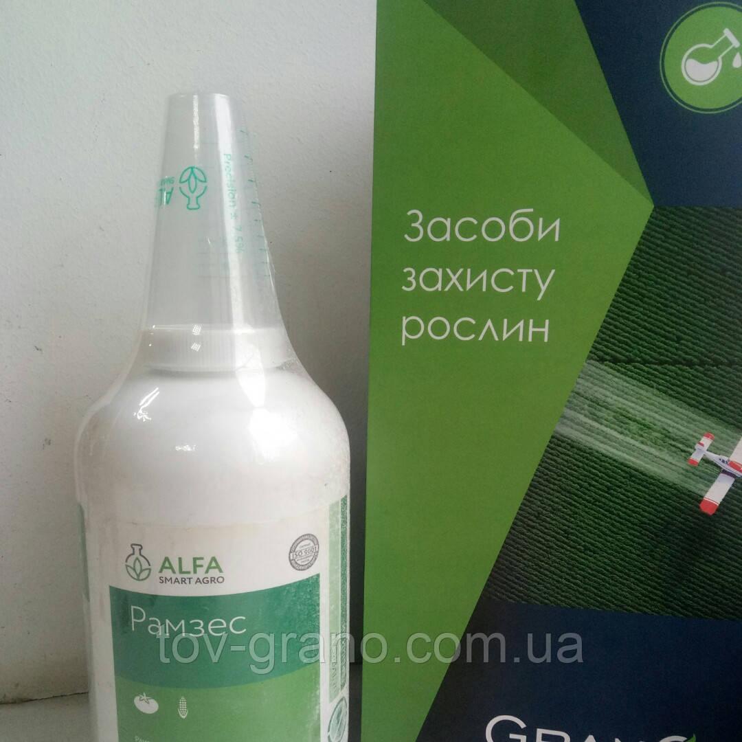 Гербицид Рамзес (Alfa smart agro) аналог Титуса