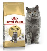 Сухой корм Royal Canin BRITISH SHORTHAIR ADULT Роял Канин для британских кошек 10 кг