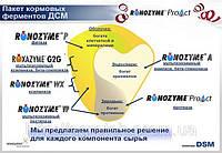 Фермент Ронозим ProAct - для улучшения усвоения протеина
