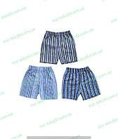 Трусы для мальчика (шортики), детская одежда от производителя, хлопок