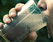 Микробы в воде из-под крана