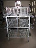 Клетки для 60 кур несушек, фото 5