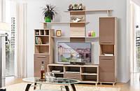 Стінка для вітальні з ДСП/МДФ (гостиная стенка) Віннер 2 Світ Меблів