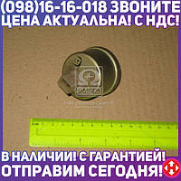 ⭐⭐⭐⭐⭐ Датчик давления  воздуха МТЗ (10 атм.) (пр-во Китай)