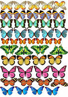 Вафельная картинка бабочки, для торта