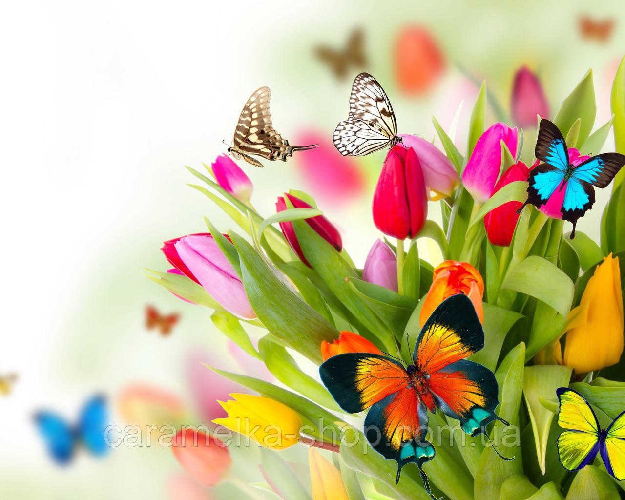 Вафельна картинка квіти і метелики, для торта