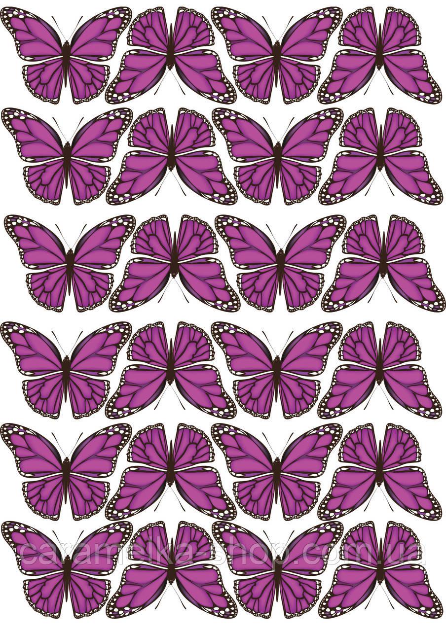 Цукрова картинка метелики, для торта