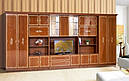 Стінка для вітальні з ДСП/МДФ (гостиная стенка) Версаль 11 (L5066) Світ Меблів