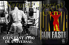 Гейнер Gain Fast 3100 (2,3 кг) Universal Nutrition, фото 4