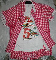 Рубашка с футболкой от 9 до 12 лет малиновая с белыми вставками