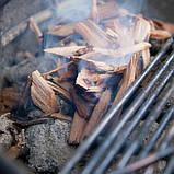 Деревянные щепки для копчения рыбы 17665, фото 6