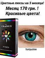 Цветные контактные линзы на 3 месяца, Fusion Ok Vision (2шт)