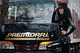 175/70R13 82H Premiorri Solazo летние, фото 5